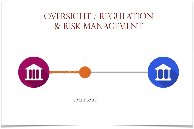 msb regulation and risk management